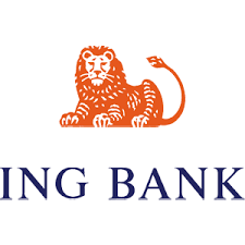 Bank: ING Netherlands Bank Account Name: Stichting Luis Daniel Maldonado Fonken Bank Account nr / IBAN: NL95 INGB 0007 4257 94